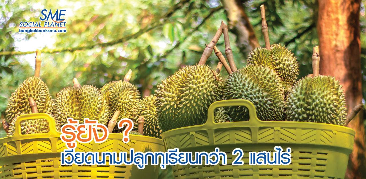 จับตาตลาดทุเรียนในเวียดนาม 'คู่แข่ง' ทุเรียนไทย