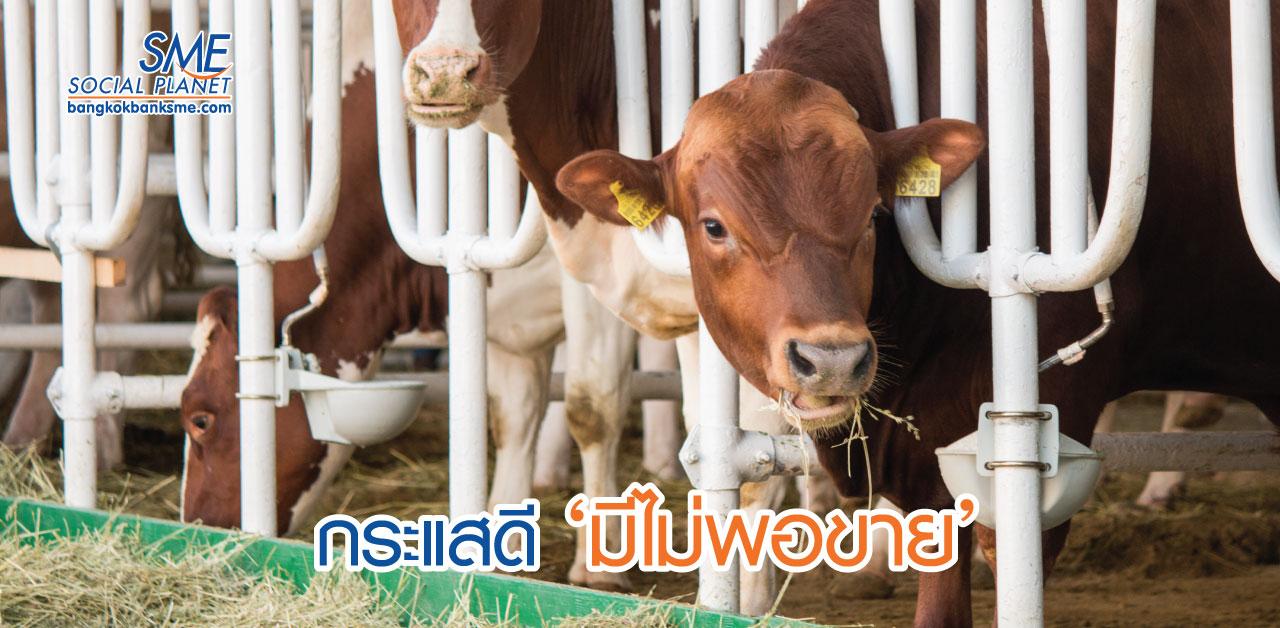 โคเนื้อ-โคขุน โอกาสปศุสัตว์ไทยรุก AEC