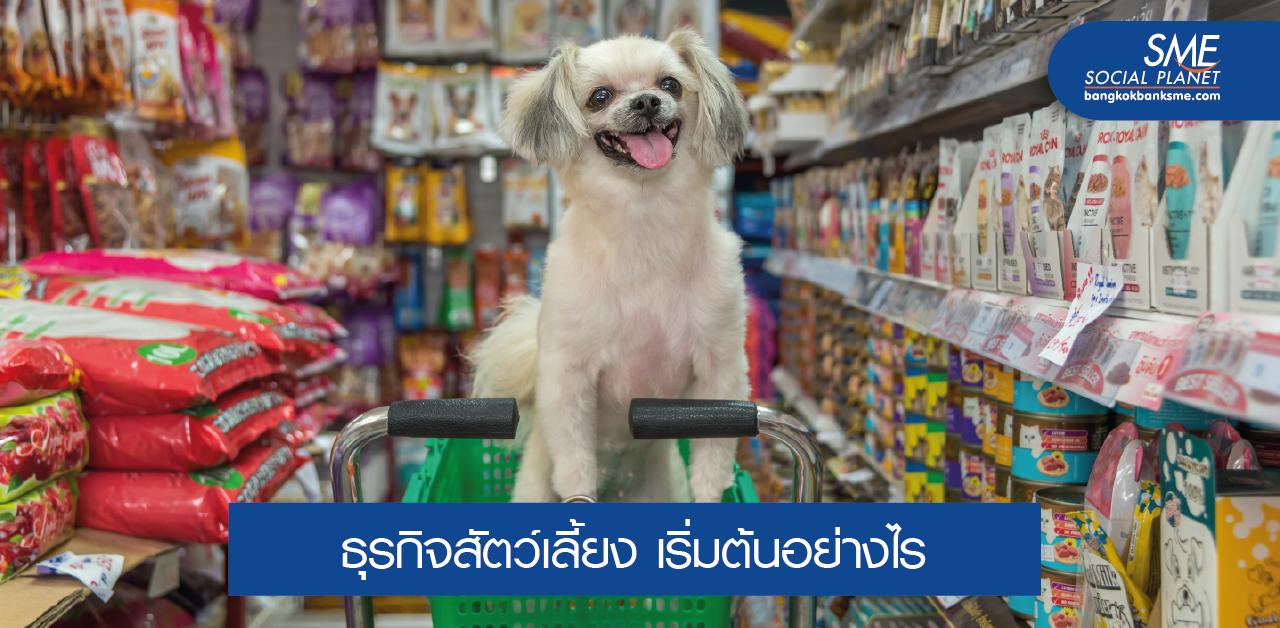 Pet Business รวมทุกปัจจัยที่คุณต้องรู้