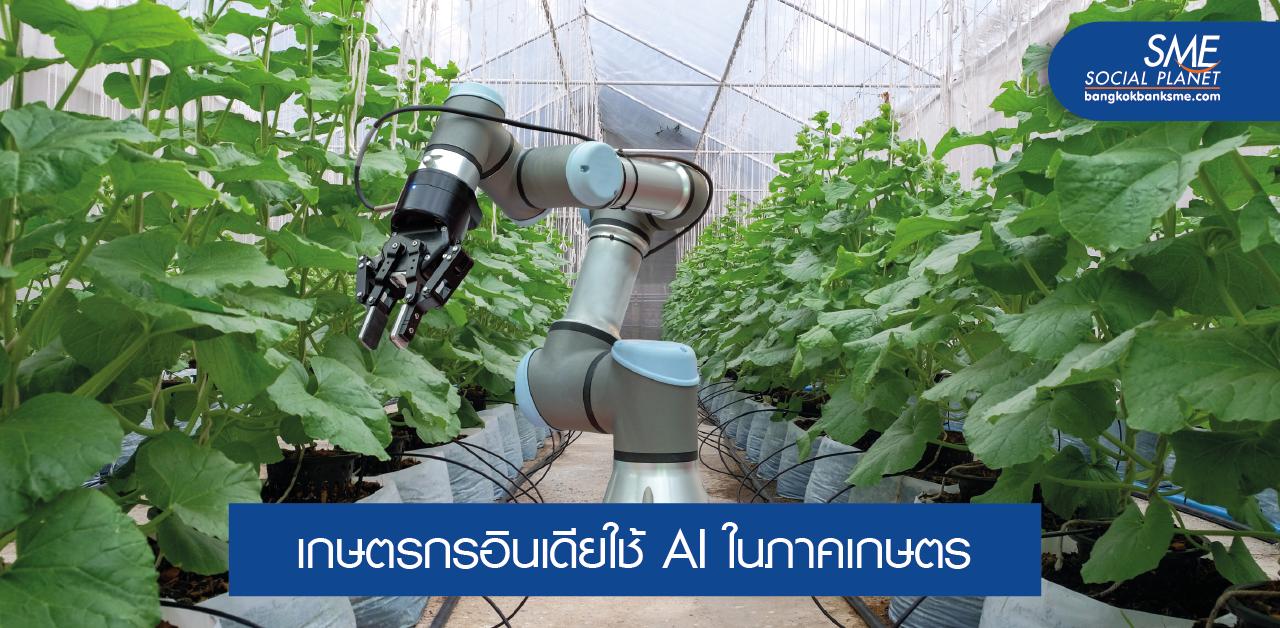 เปลี่ยนเกษตรดั้งเดิมเป็น 'เกษตรแม่นยำ' ด้วย AI