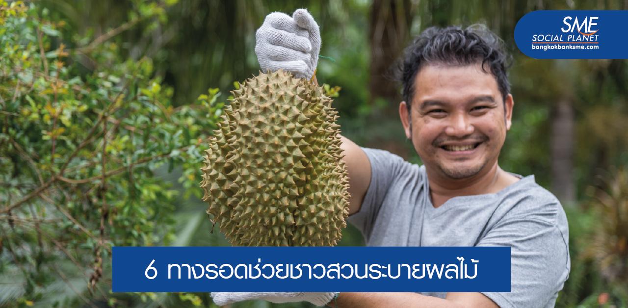 ฝ่าวิกฤติส่งออกผลไม้ไทย