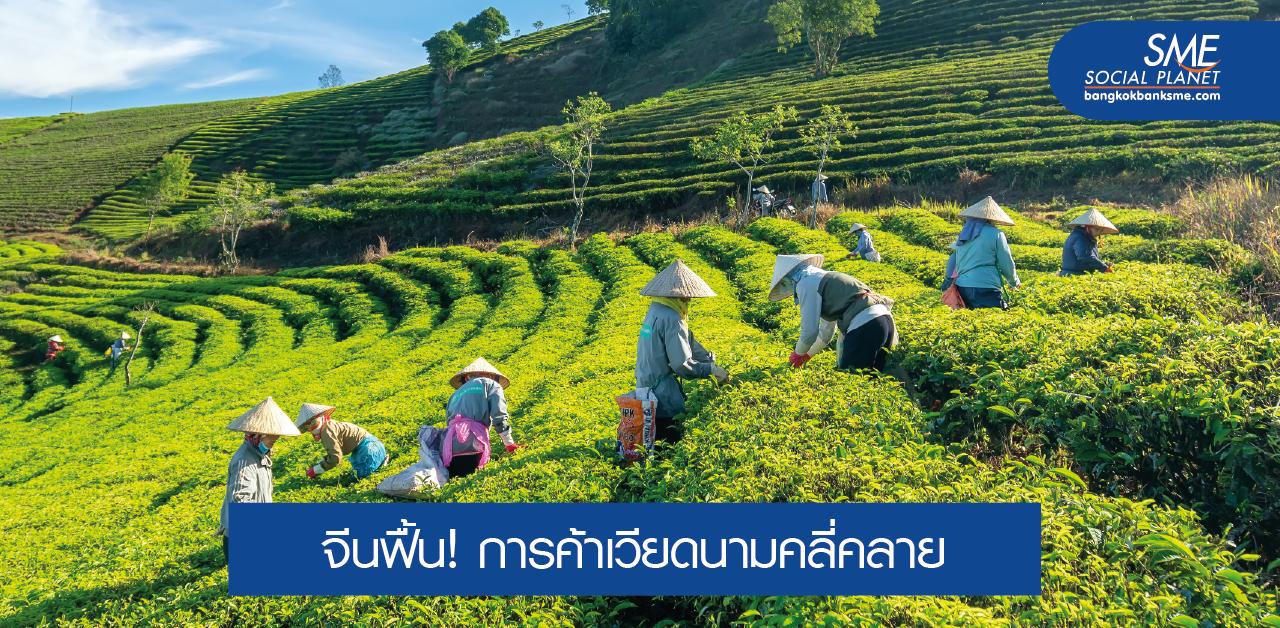 ส่งออกต้องไม่ลดลง! ความท้าทายภาคเกษตรในเวียดนาม