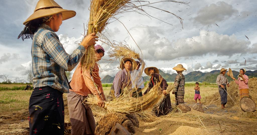 กระตุ้นรัฐบาลเมียนมา ปรับปรุงภาคเกษตร