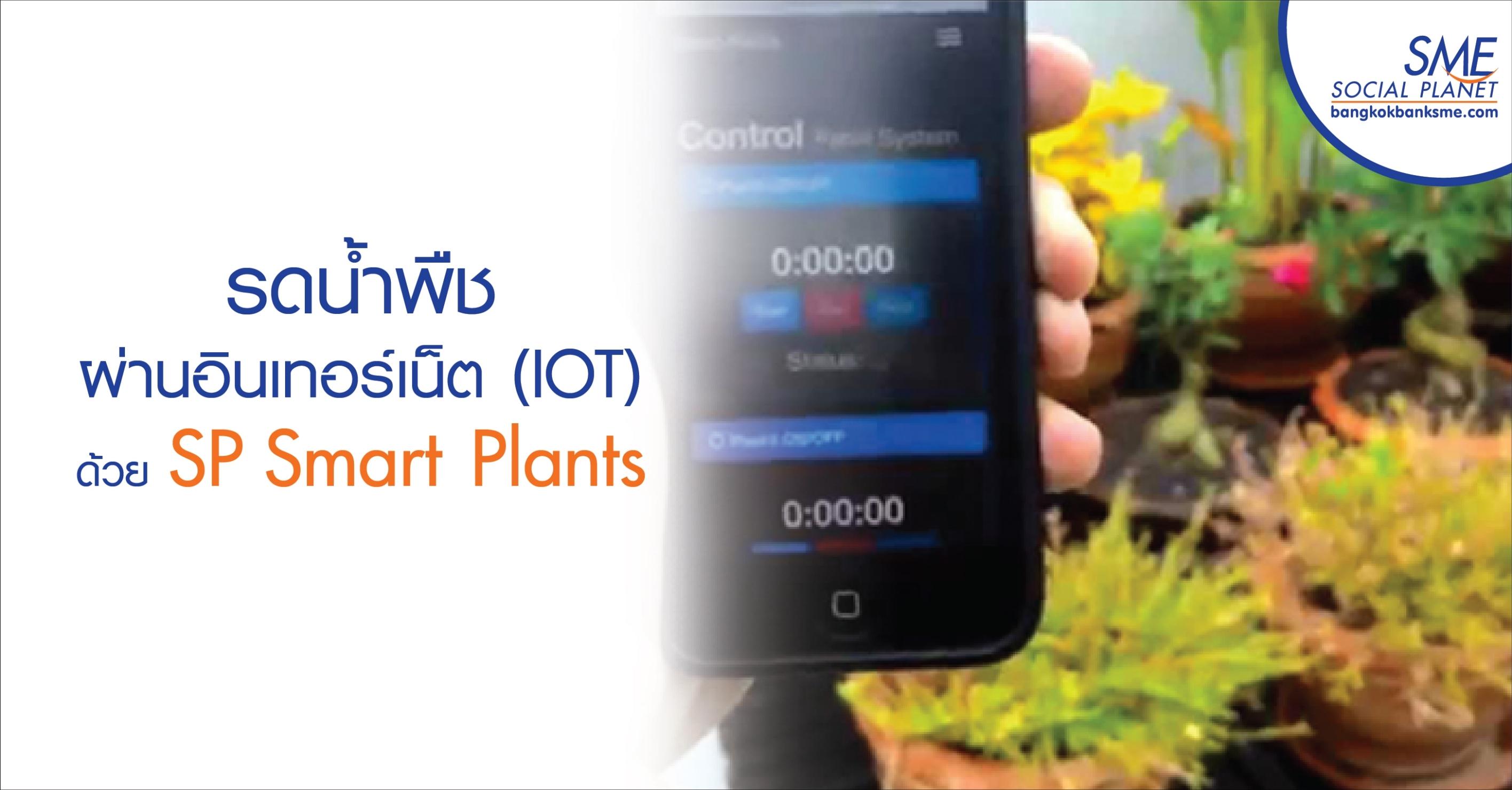 รดน้ำพืชผ่านอินเทอร์เน็ต (IOT) ด้วย SP Smart Plants