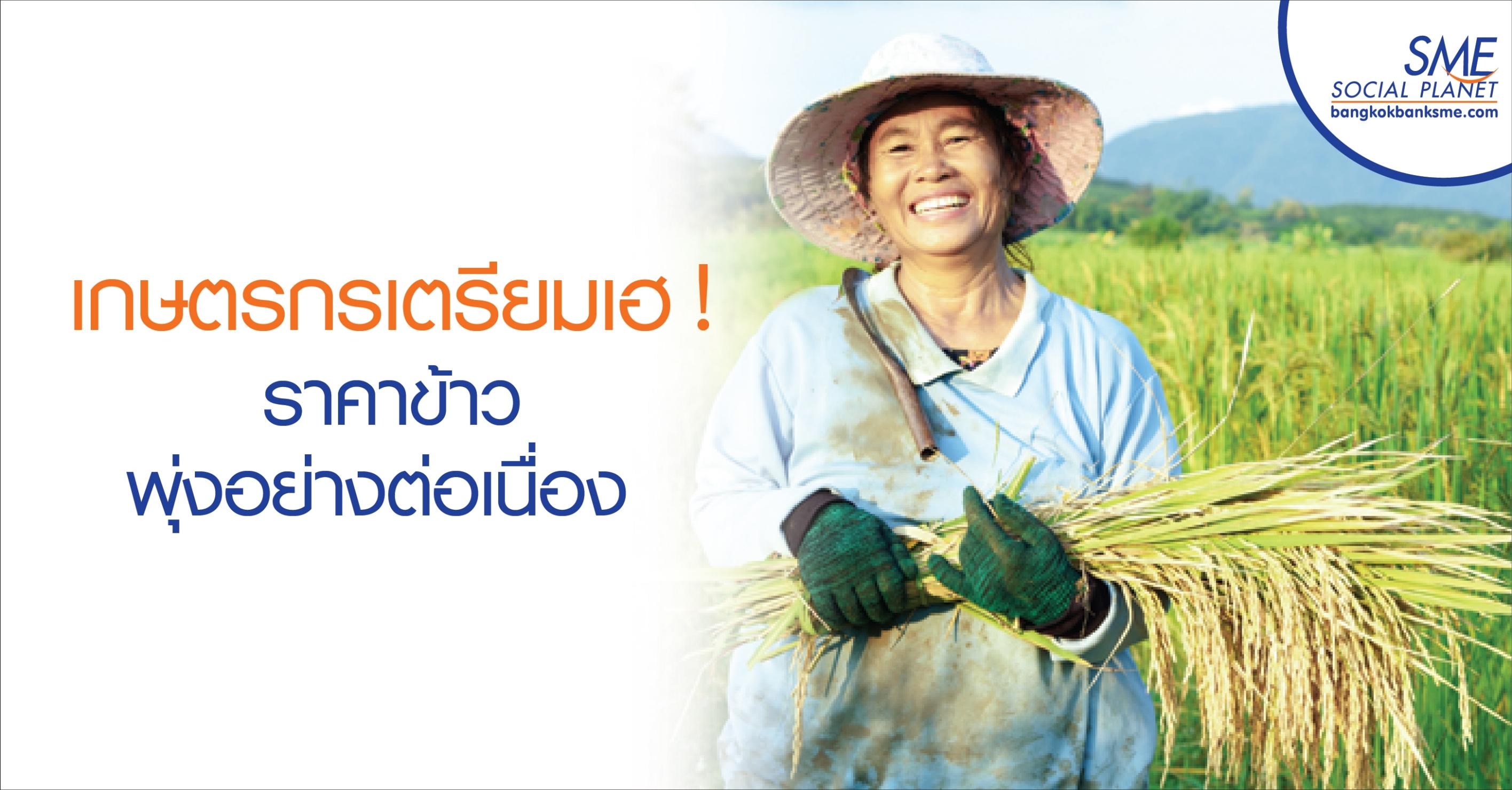 เกษตรกรเตรียมเฮ ! ราคาข้าวพุ่งอย่างต่อเนื่อง