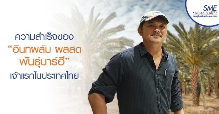 """ความสำเร็จของ """"อินทผลัม ผลสด พันธุ์บาร์ฮี"""" เจ้าแรกในประเทศไทย"""