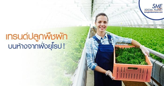 เทรนด์ปลูกพืชผักบนห้างจากฝั่งยุโรป !