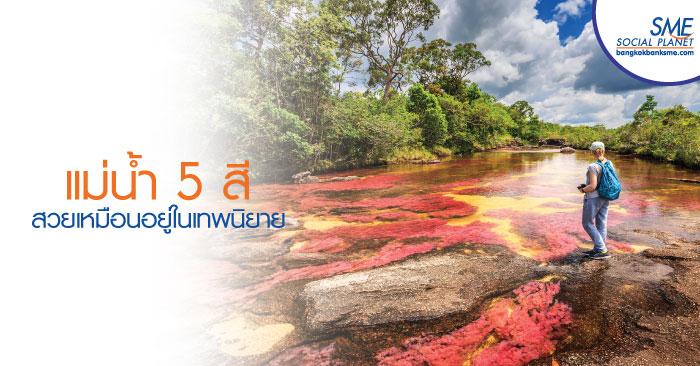CAÑO CRISTALES แม่น้ำที่สวยที่สุดในโลก