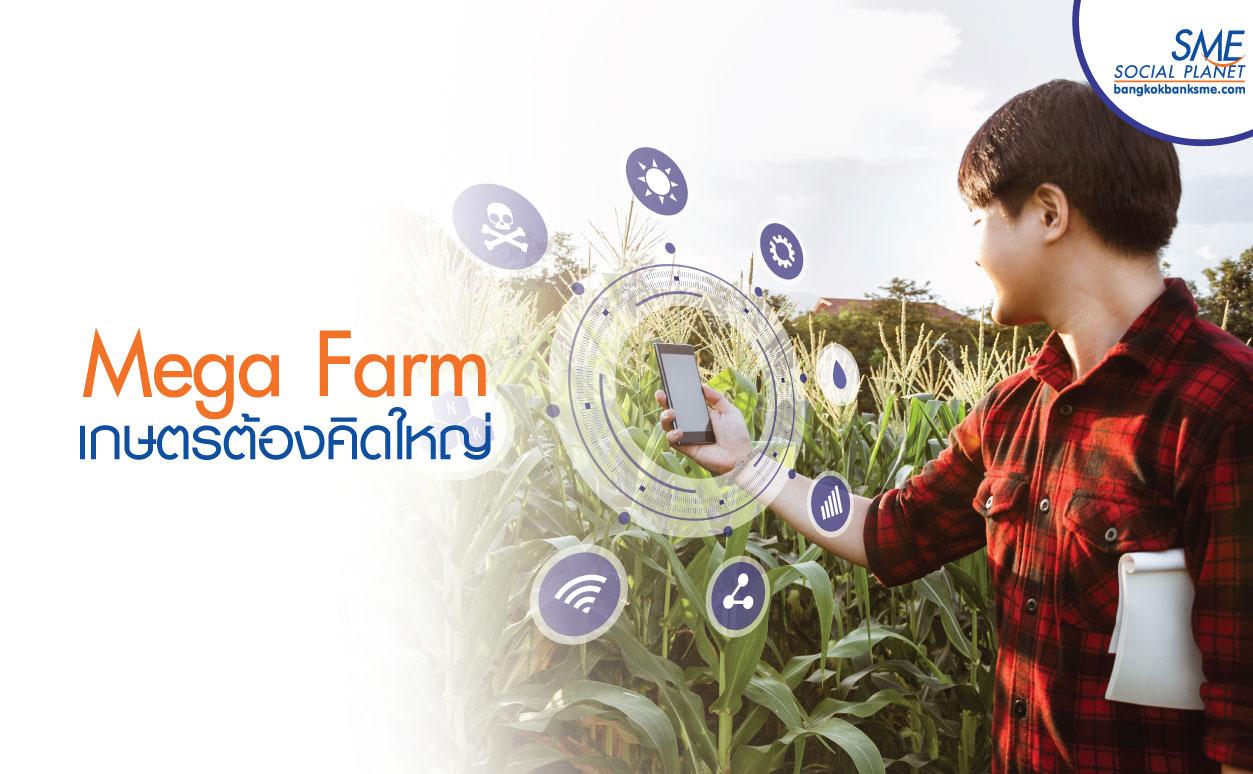 Mega Farm Enterprise ต่อยอดนโยบายเกษตรแปลงใหญ่