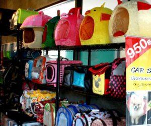 ร้าน Pet Shop ฟันรายได้กว่า 5 แสน/เดือน คืนทุนใน 3 ปี